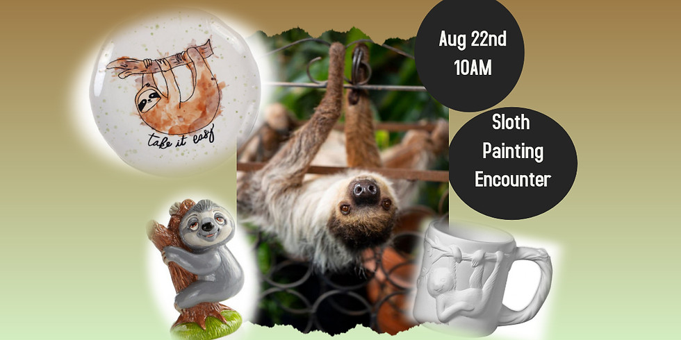 Sloth Painting Encounter