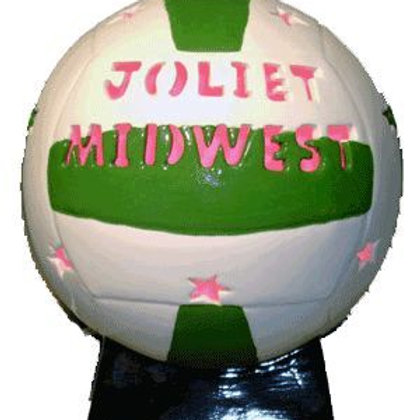 Personalized Light-up Volleyball