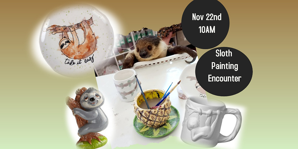 Xena the Sloth Returns to paint some more!