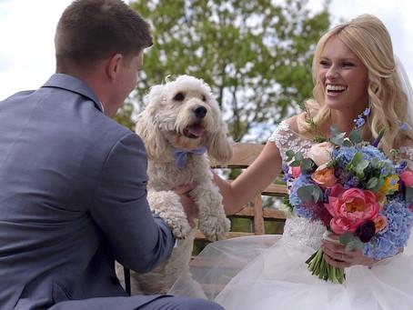 Botleys Mansion Wedding Videographer | Chertsey, Surrey | W4 Wedding Films