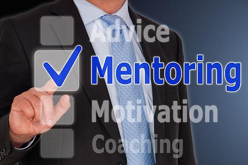 Book Marketing Mentorship PDFs