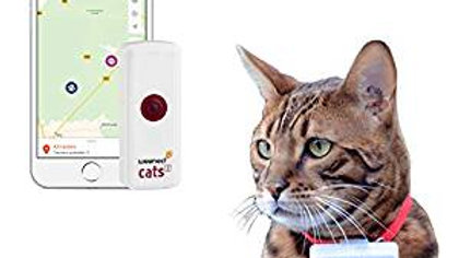 Traceur GPS Weenect Cats2