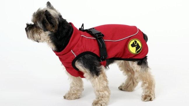 Manteau pour chien anti-parasitaire