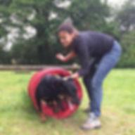 éducation canine positive éducateur canin angers 49 club canin education canine brissac