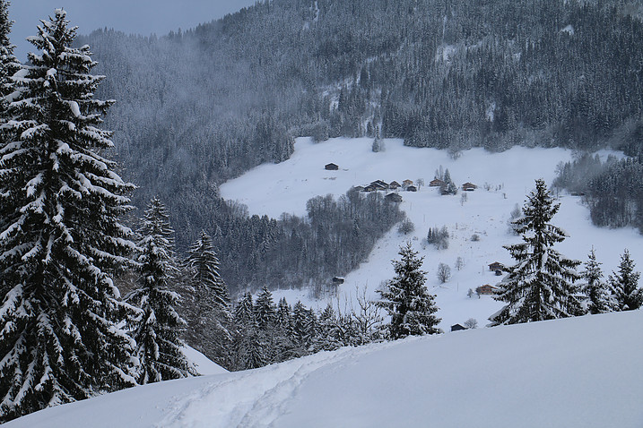 areches3