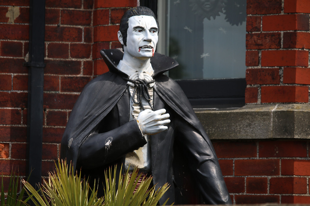 guesthousesitters whitby dracula