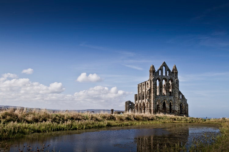 Whitby Abbey photo by Michael D Beckwith