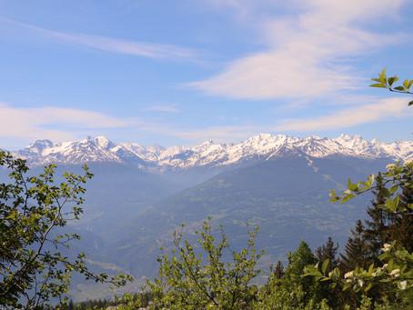 Balade sur l'Alpage de Serin et le Bisse de Sion