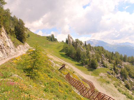 Notre mini tour des Alpages sur les hauteurs d'Anzère !