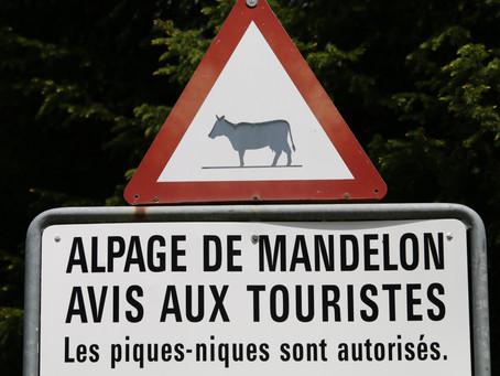 Montée à l'Alpage de Mandelon