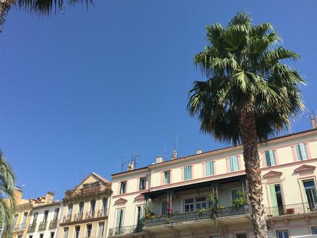 Hyères et ses palmiers
