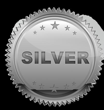 silver-plain.png