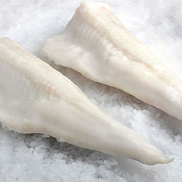 Pesce Congelato Ocean47