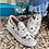 Thumbnail: Cowhide Van Slip on Tennis Shoes