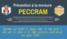 peccram flyer.jpeg