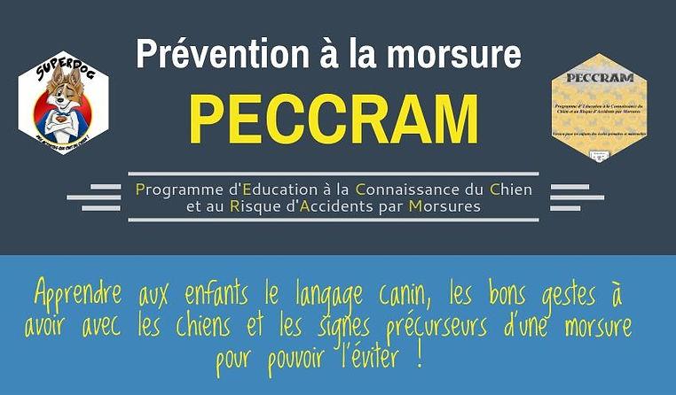 peccram flyer.jpeg