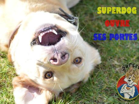 Ca y essssst Superdog ouvre ses portes !