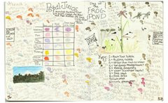 Nature journal entry by Fiona Gillogly