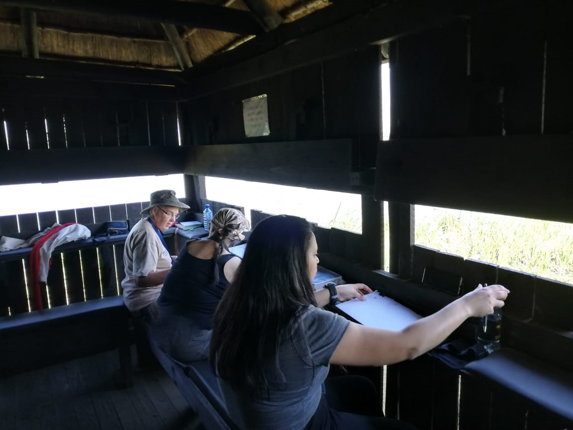 Three women sitting at bird hide