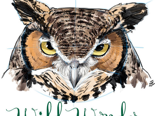 Nature Journaling Events