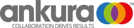 ankura logo.png