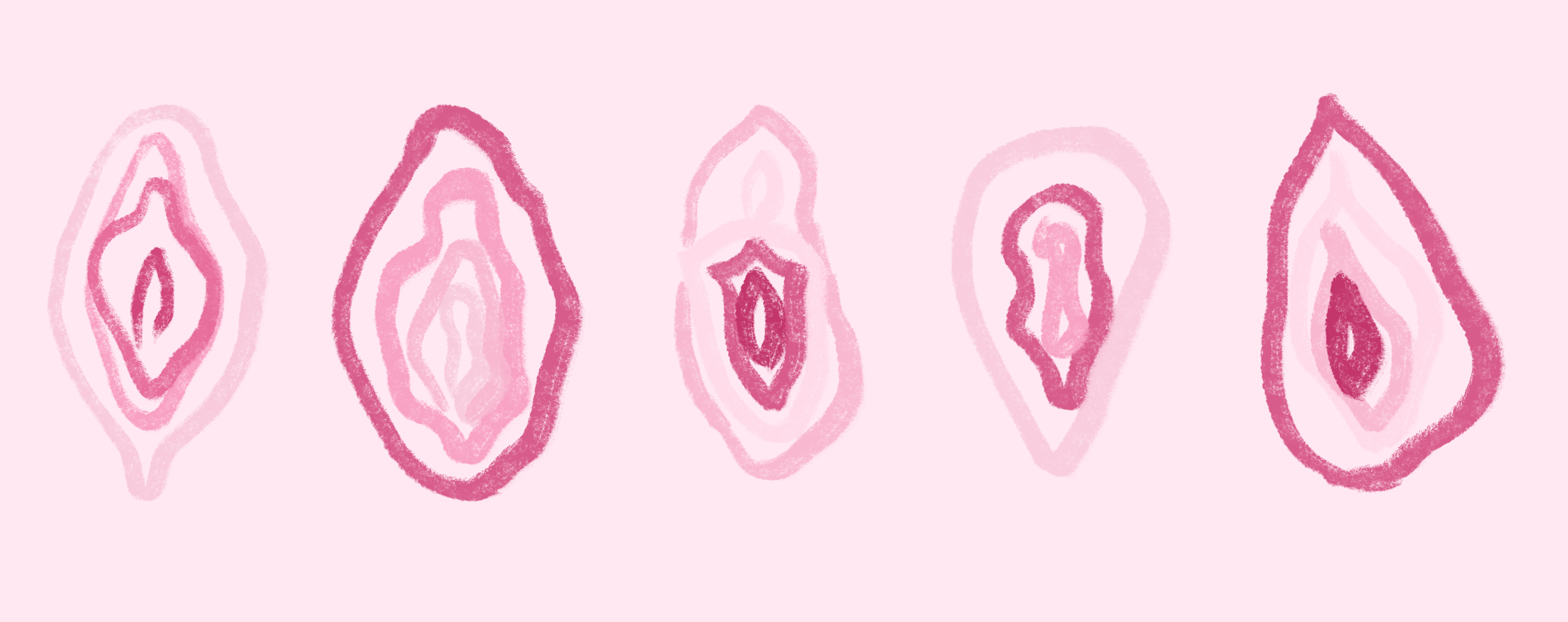 Vaginas Blog Post Illustration