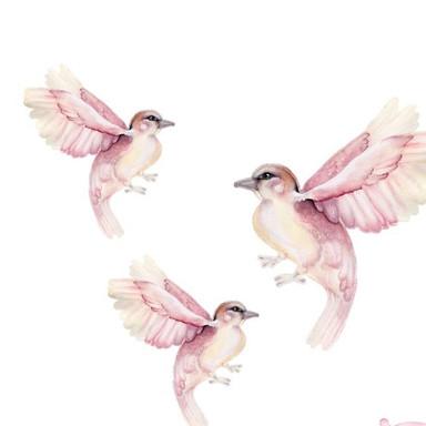 LITTLE RAE PRINTS | Birdy Wall Decal Set