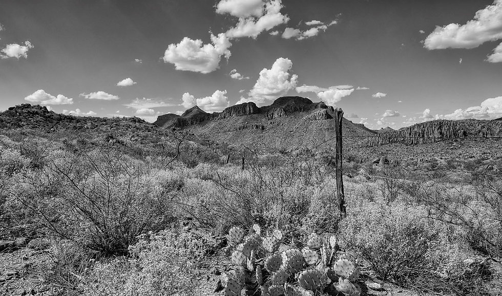Old-Fence-in-Big-Bend-Ranch-1-Black-and-