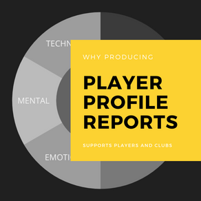 Why Player Profiling is important to the continued development of players