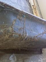 termite2_edited.JPG