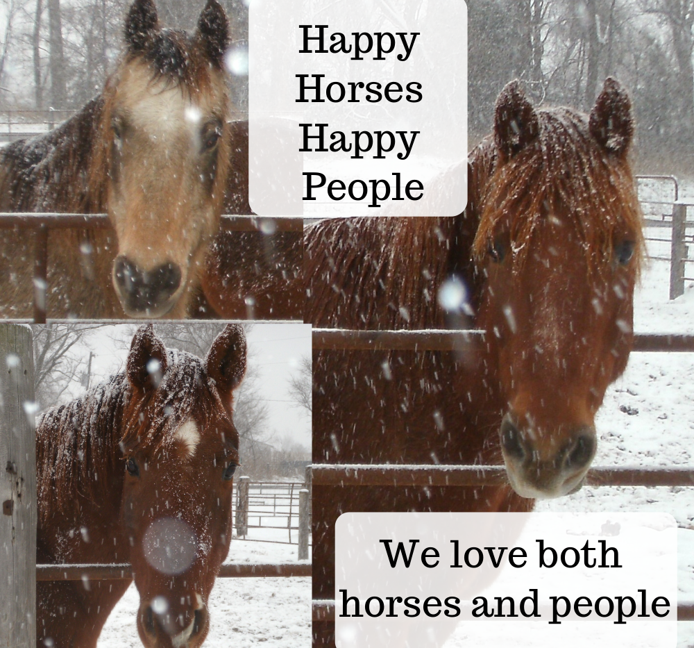 happy horses and people.png