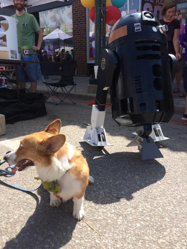 R2-Q5 Corgi