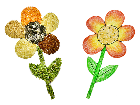 Flower Drawing & Craft for Kids (Printable Included!)