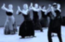 Flamenco Amaral (7).jpg