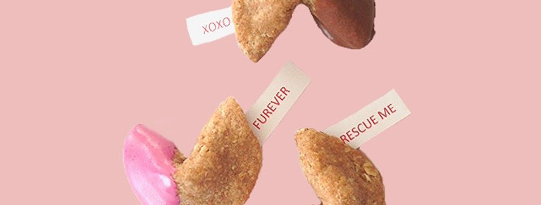 Valentine Fortune Cookies in Take-Out Box - Select a Size