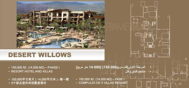 desert_willow-1