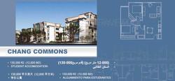 chang_commons-1