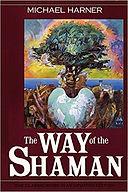 Way of the Shaman.jpg