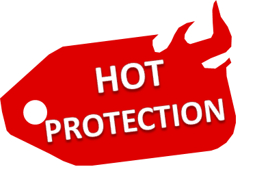 LOGO HOT PROTECTION.png