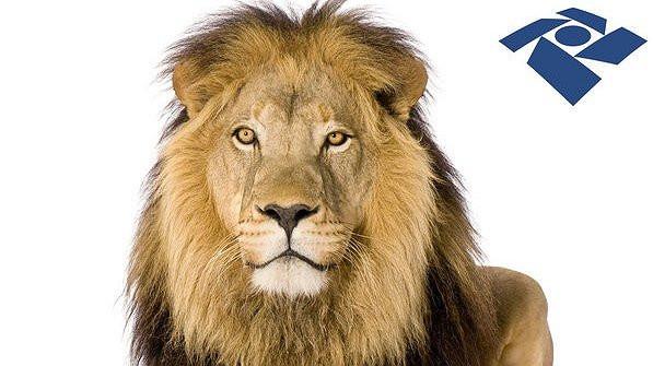 Carnê leão: Questões que todo profissional autônomo e liberal precisa conhecer