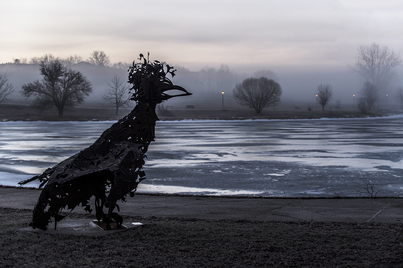 Fowl Play in Winter Fog