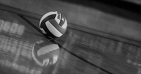 website+volleyball+3+-+bw.jpg