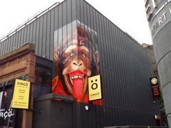 Circus Monkey Mural