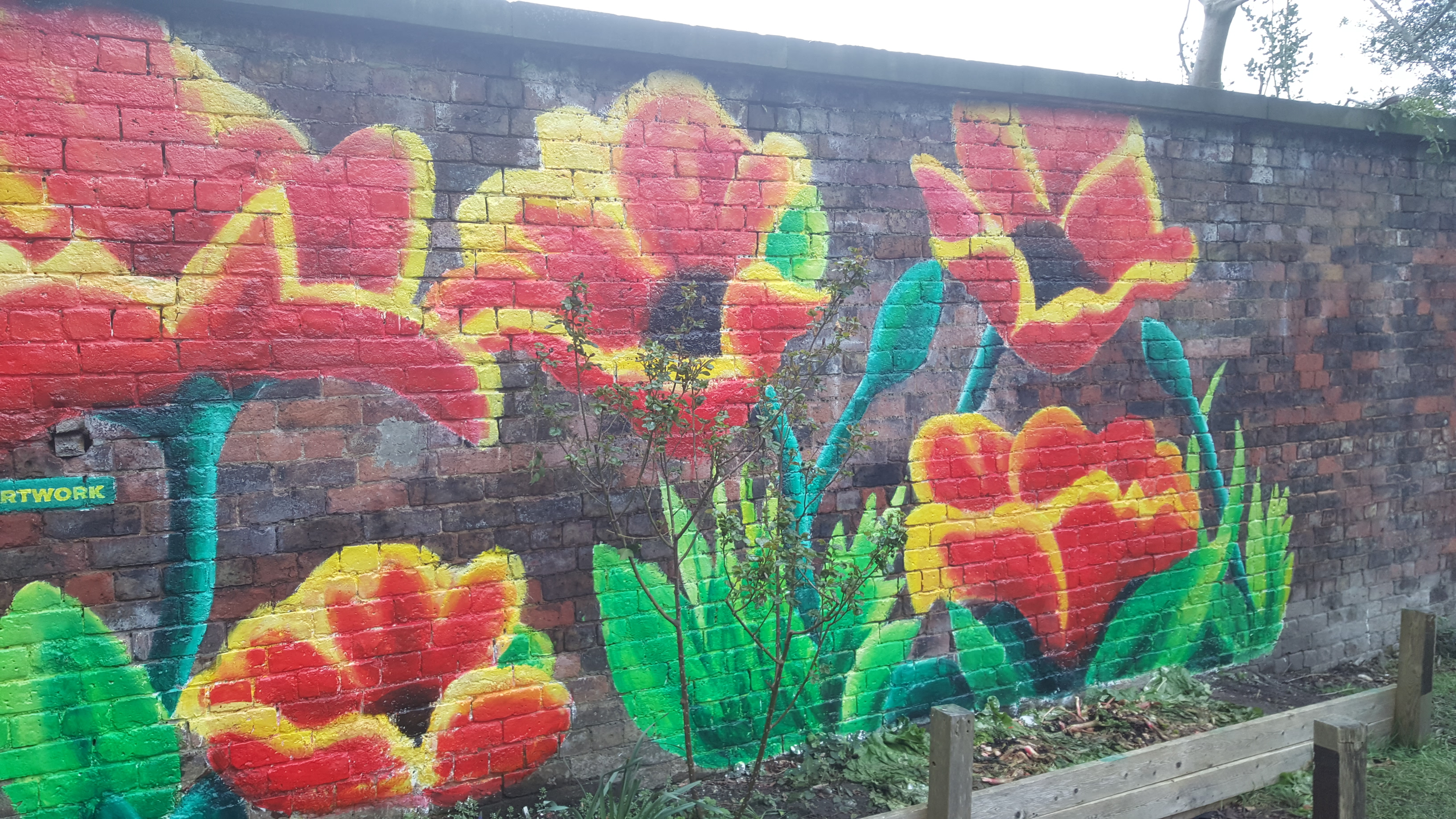 Poppy art graffiti
