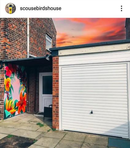 Scouse bird instagram post- Paul Curtis