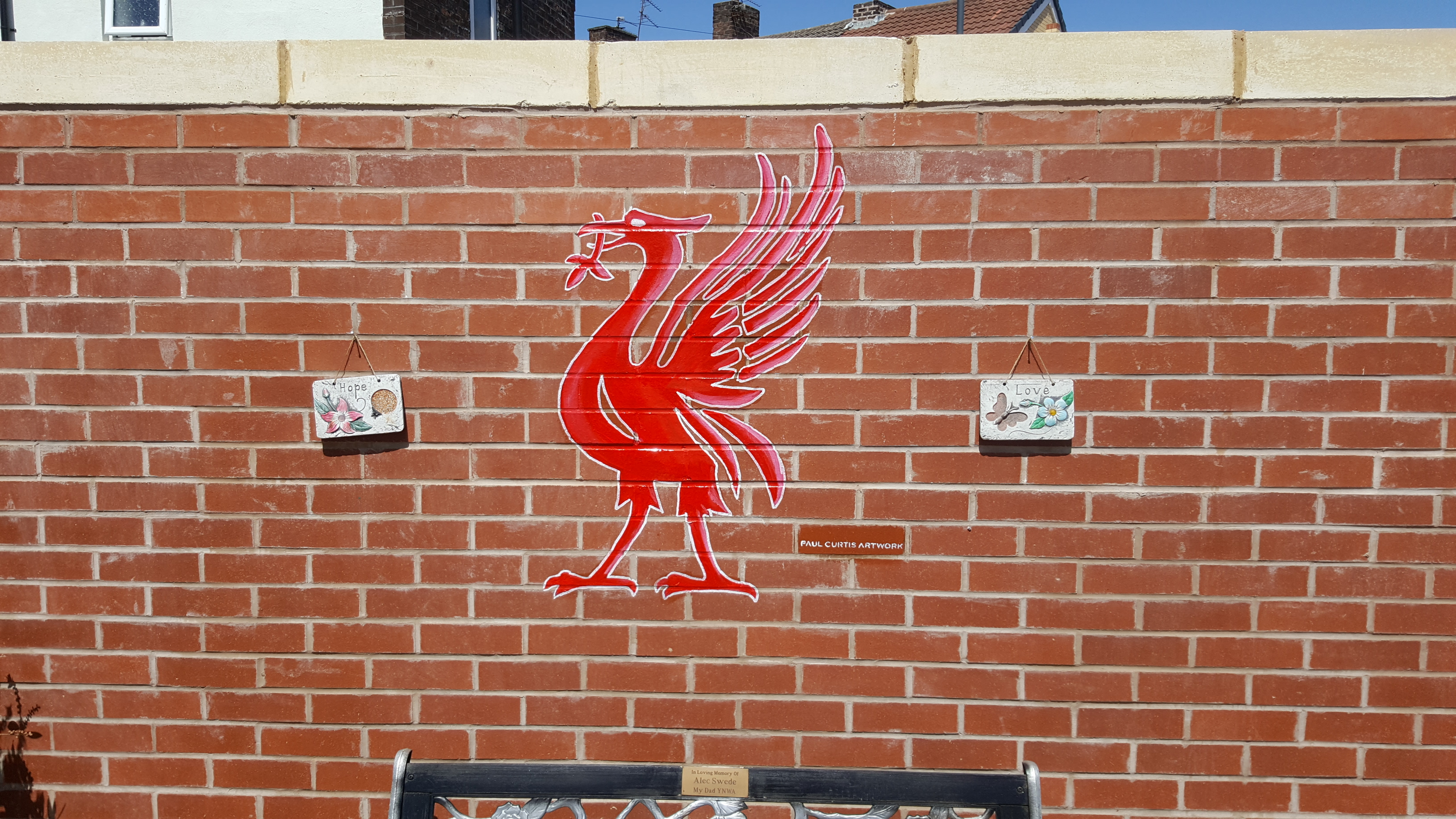 A red liverbird