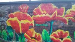 Flower Wall art by Paul Curtis