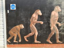 Ape men mural