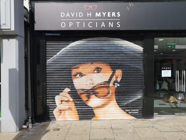 Audrey Hepburn Mural Paul Curtis, Optiti