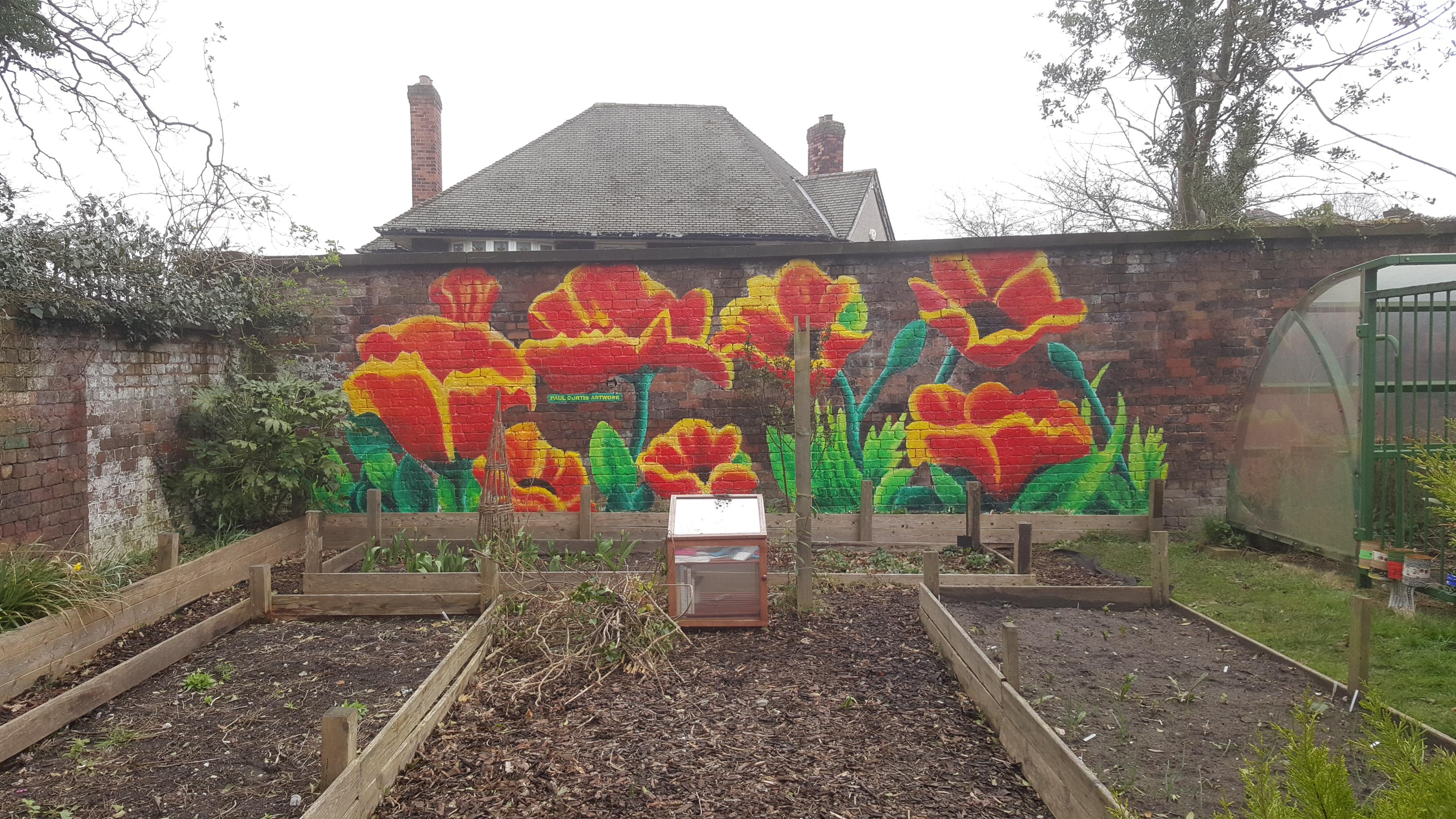 Poppies graffiti